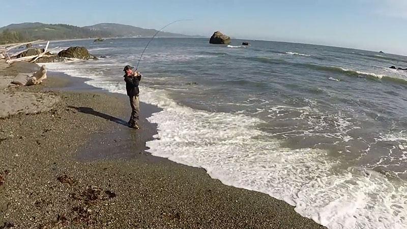 Oregon surf perch fishing tv for Surf perch fishing oregon